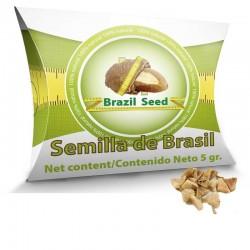 Distribuidores directos de Semilla de Brasil